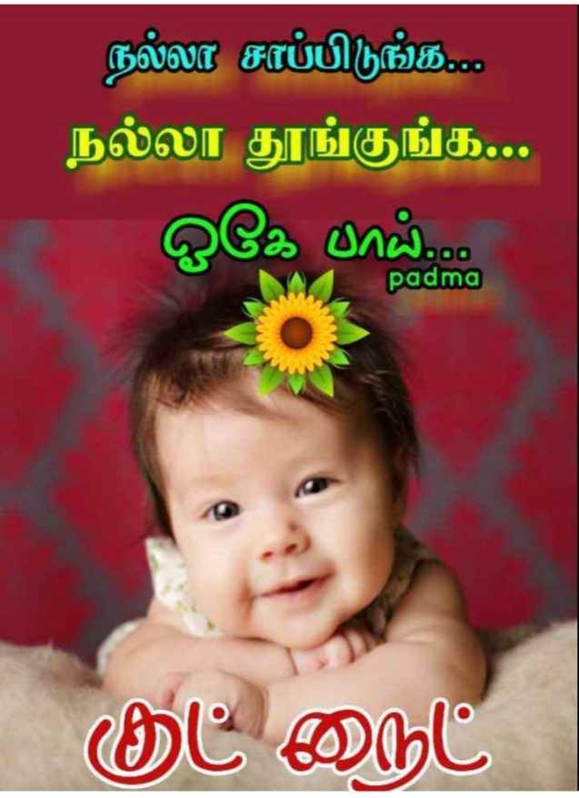 🌷💕🍒இரவு வணக்கம்🍒💕🌷 - நல்லா சாப்பிடுங்க . . . . நல்லா தூங்குங்க . . . ஓகே பாய் . . . . padma குட் நைட் - ShareChat