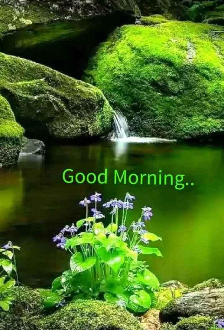🌞காலை வணக்கம் - Good Morning . . - ShareChat