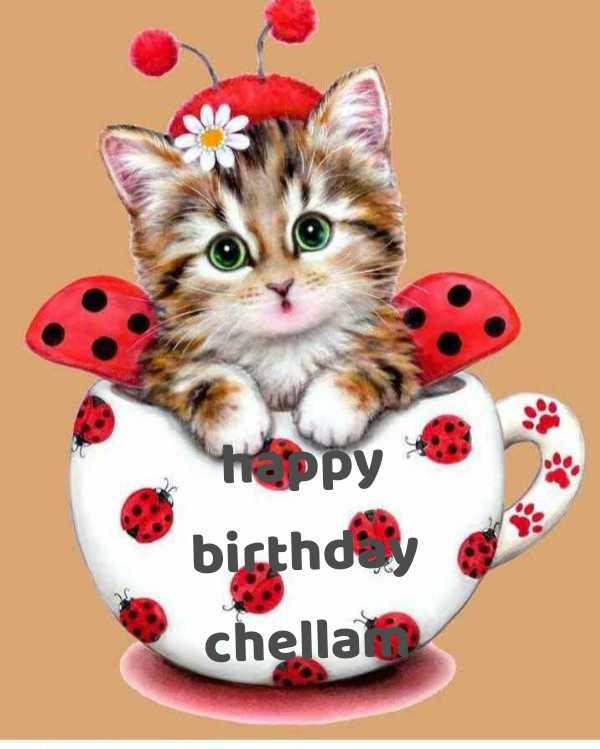 🌷 வாழ்த்து - happy birthday chella - ShareChat
