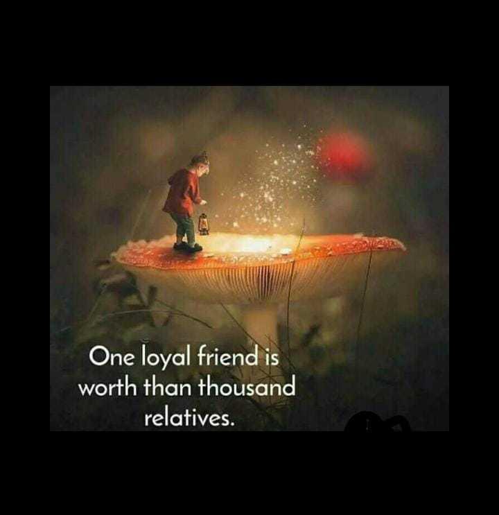 😏ఆటిట్యూడ్ స్టేటస్ - One loyal friend is worth than thousand relatives . - ShareChat