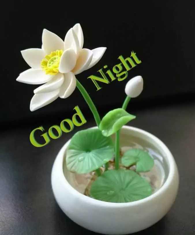 😆ఏప్రిల్ కూల్ 🌳🌱 - Night Good - ShareChat