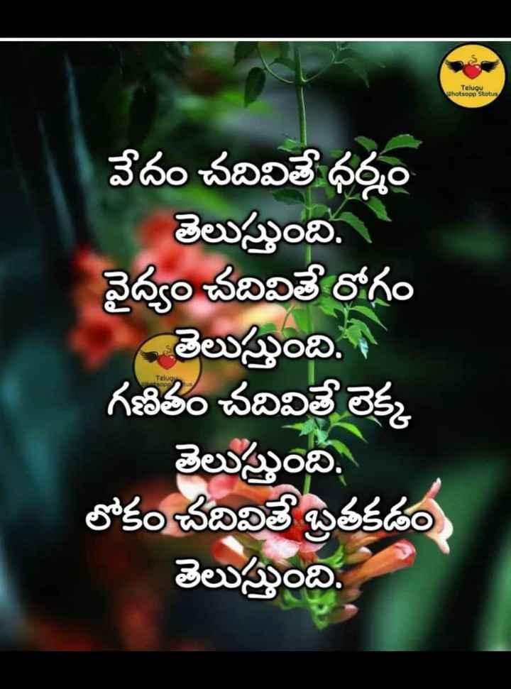 🗓చరిత్రలో నేడు - Telugu Whatsapp Stotus వేదం చదివితే ధర్మం తెలుస్తుంది . ఆ వైద్యం చదివితే రోగం - తెలుస్తుంది . ఆ గణితం చదివితే లెక్క తెలుస్తుంది . లోకం చదివితే బ్రతకడం తెలుస్తుంది . Telugu - ShareChat