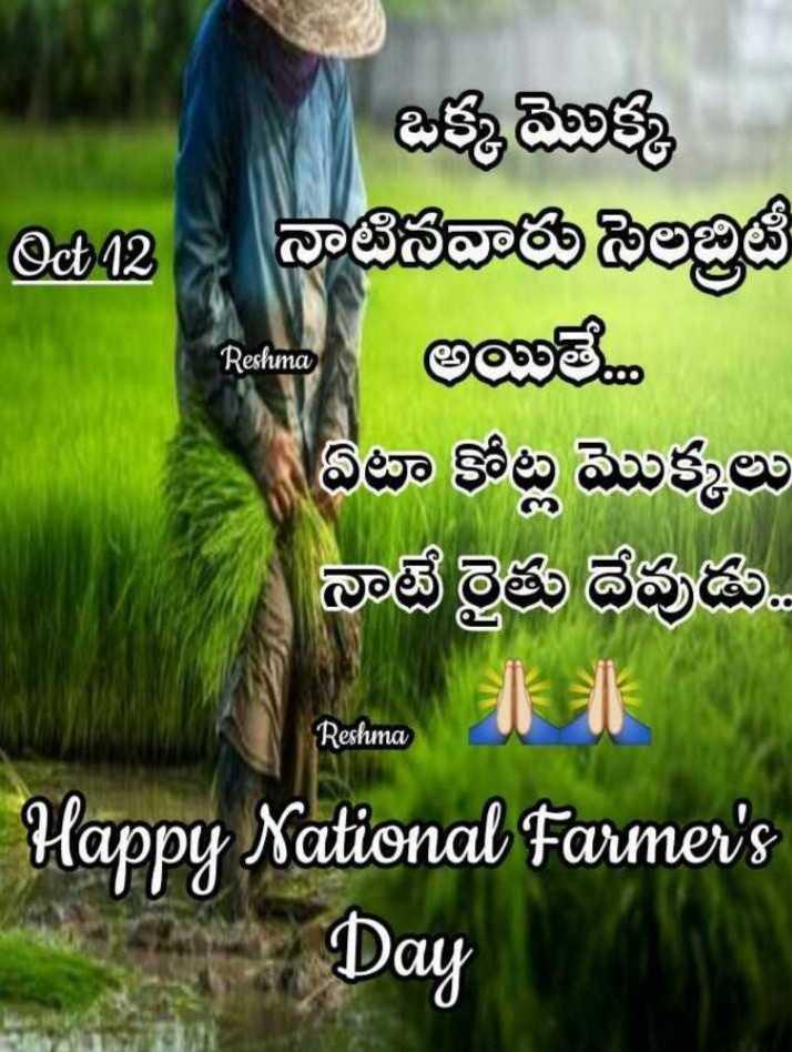 🌾జాతీయ రైతు దినోత్సవం - Cot42 Reshima ఒక్క మొక్క Dec2 - నాటినవారు సెలబ్రిటీ అయితే . . . ఏటా కోట్ల మొక్కలు నాటే రైతు దేవుడు . . M - Happy National Farmer ' s 2 Day Reshuma - ShareChat
