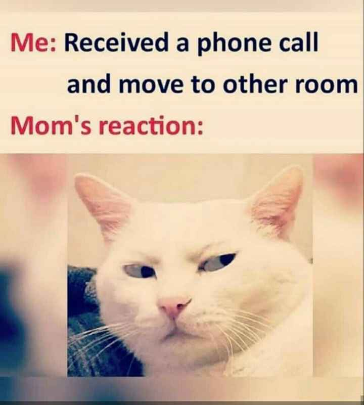 🤣ట్రాల్స్ & మీమ్స్ - Me : Received a phone call and move to other room Mom ' s reaction : - ShareChat
