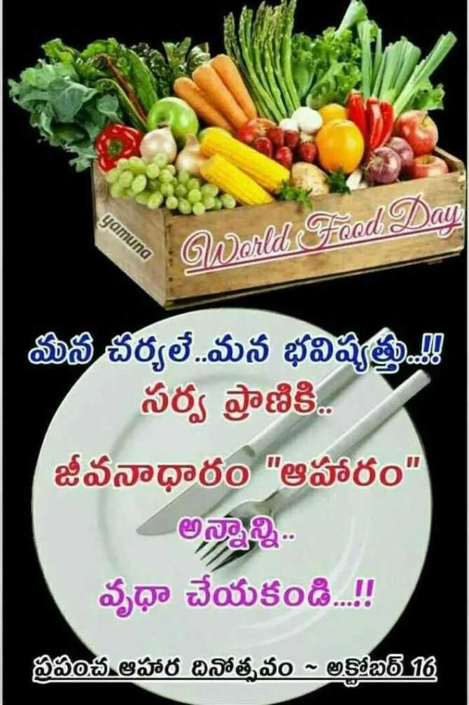 ప్రపంచ ఆహార దినోత్సవం🍎🍲🍜 - yamuna World Food Day మన చర్యలే . . మన భవిష్యత్తు . . . ! ! సర్వ ప్రాణికి . జీవనాధారం ఆహారం అన్నాన్ని . . వృధా చేయకండి . . . ! ! ప్రపంచ ఆహార దినోత్సవం - అకోబర్ 16 - ShareChat