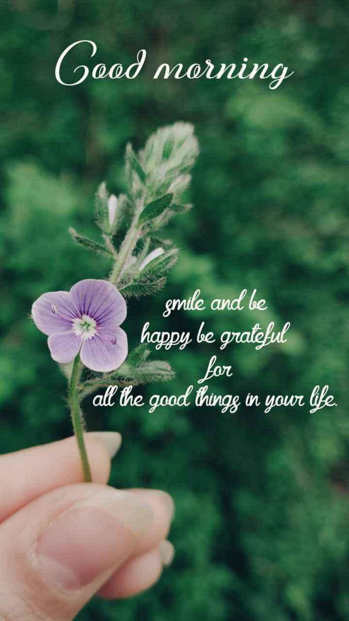 👫 బంధం - Good morning smile and be happy be grateful for all the good thingg in your life . - ShareChat