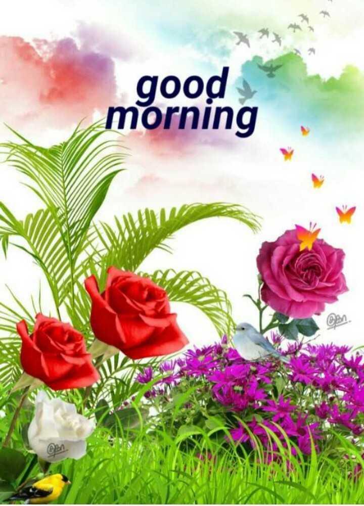 🌷బుధవారం స్పెషల్ విషెస్ - good morning - ShareChat