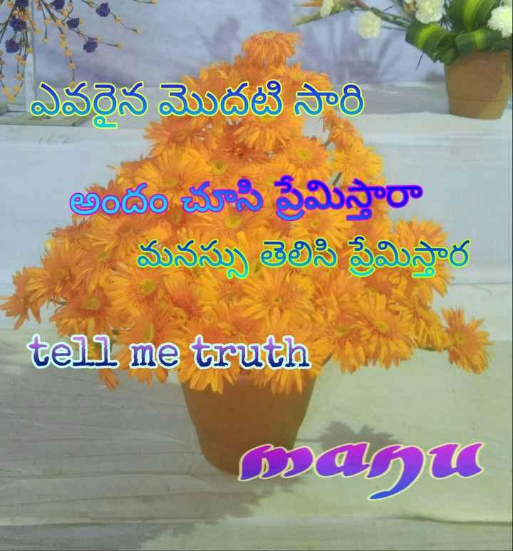 💔లవ్ ఫెయిల్యూర్ సాంగ్స్ - ఎవరైన మొదటి సారి అండంచూసి ప్రేమిస్తారా మనసు తెలిసి ప్రేమిస్తార tell me truth மதம் - ShareChat