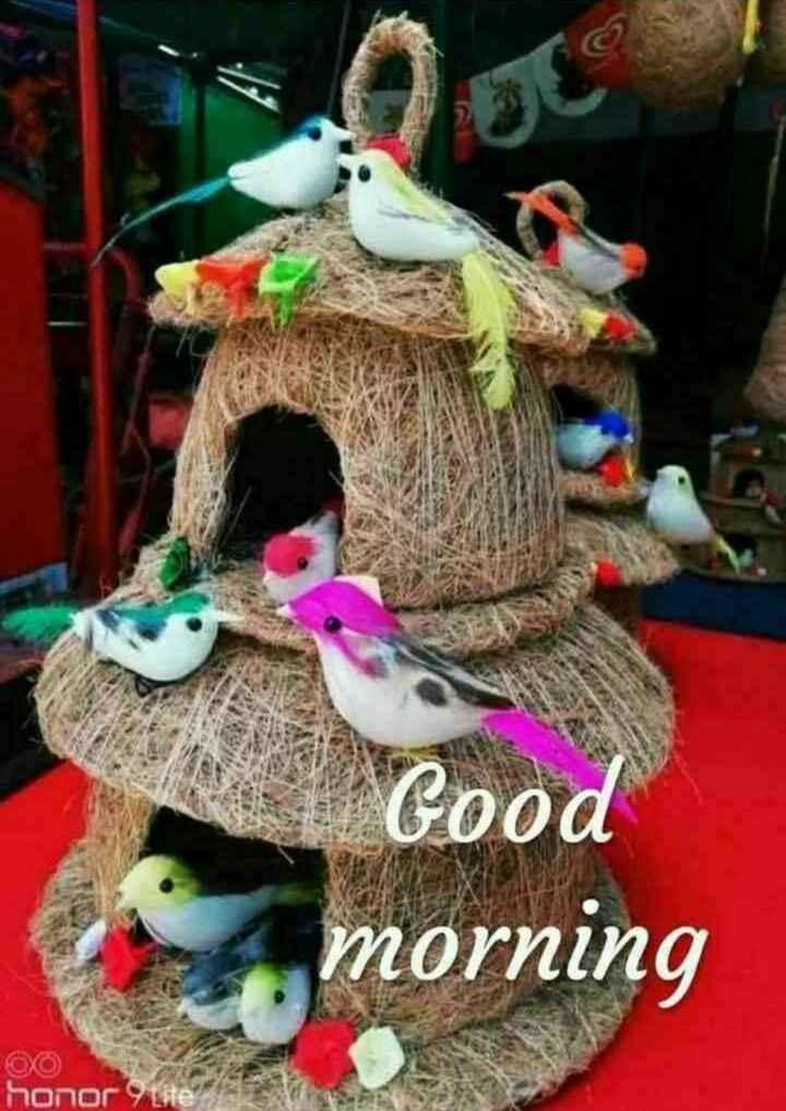 💐విషెస్ GIF - Good A morning חסהסר - ShareChat