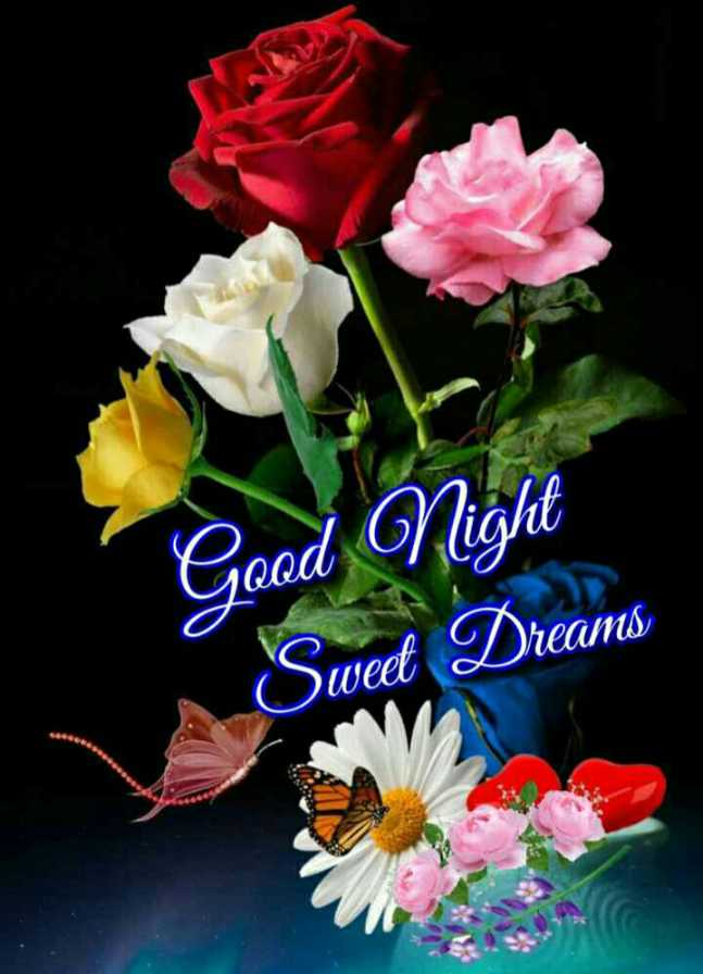😴శుభరాత్రి - Good Night Swed Dreams - ShareChat