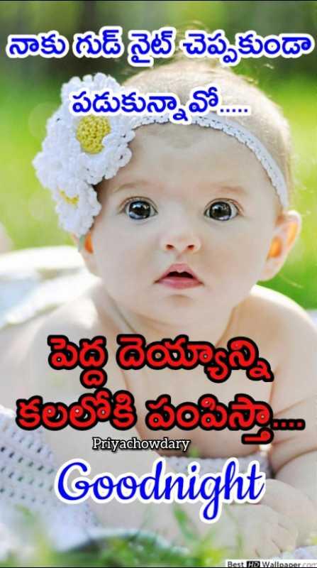 😴శుభరాత్రి - నాకు గుడ్ నైట్ చెప్పకుండా పడుకున్నావో . . . . . పెద్ద దెయ్యాన్ని కలలోకి పంపిస్తా Goodnight Priyachowdary Best HD Wallpaper . com - ShareChat