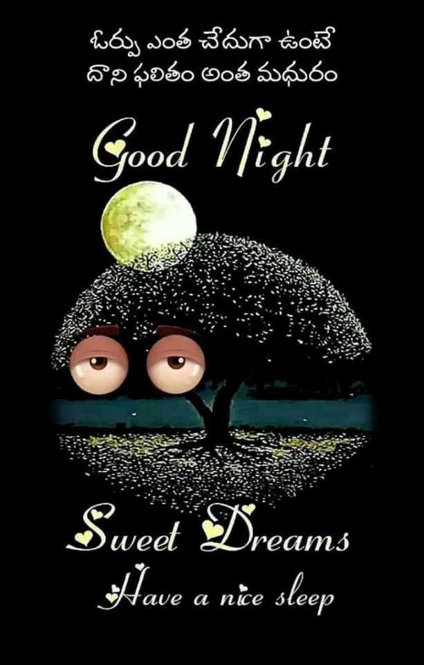 😴శుభరాత్రి - ఓర్పు ఎంత చేదుగా ఉంటే దాని ఫలితం అంత మధురం Good Night Sweet Dreams Have a nie sleep - ShareChat