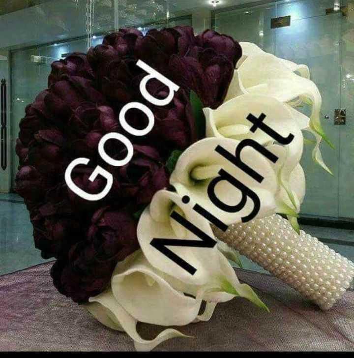 😴శుభరాత్రి - Good Night - ShareChat