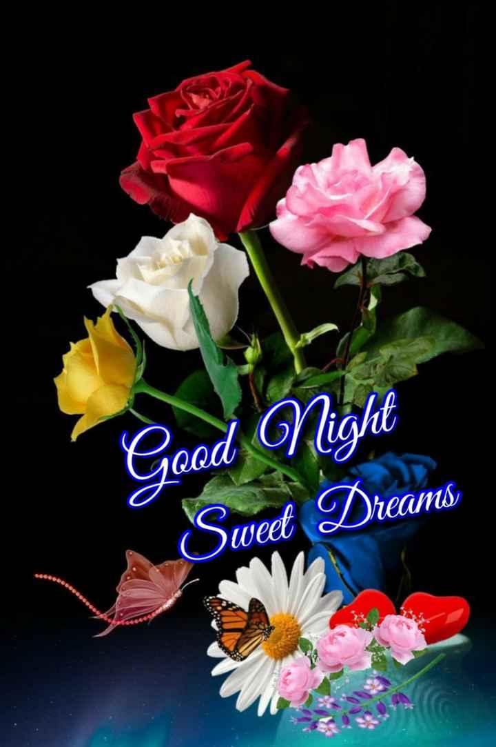 🙏శుభాకాంక్షలు - Good Night Sweet Dreams - ShareChat