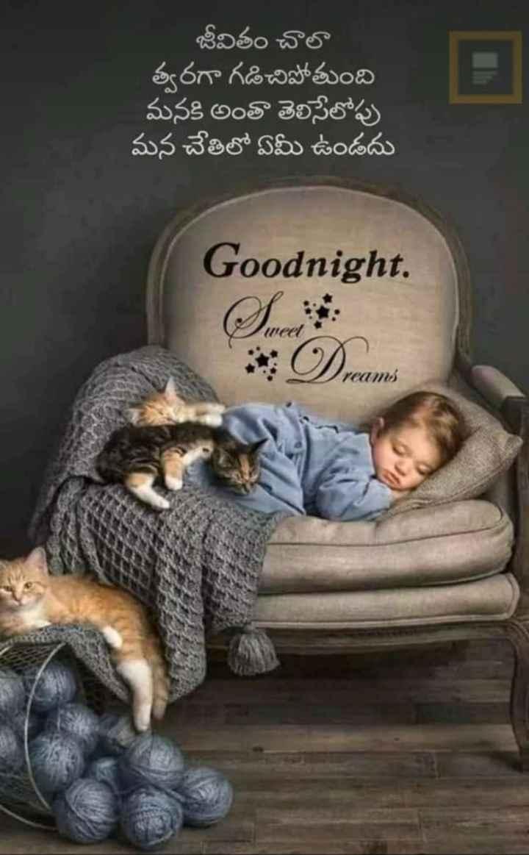 🙏శుభాకాంక్షలు - జీవితం చాలా త్వరగా గడిచిపోతుంది మనకి అంతా తెలిసేలోపు మన చేతిలో ఏమీ ఉండదు Goodnight . Heel Dreams - ShareChat