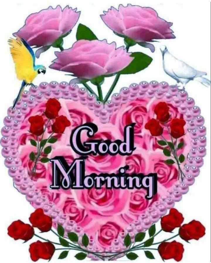 🙏శుభాకాంక్షలు - Morning - ShareChat