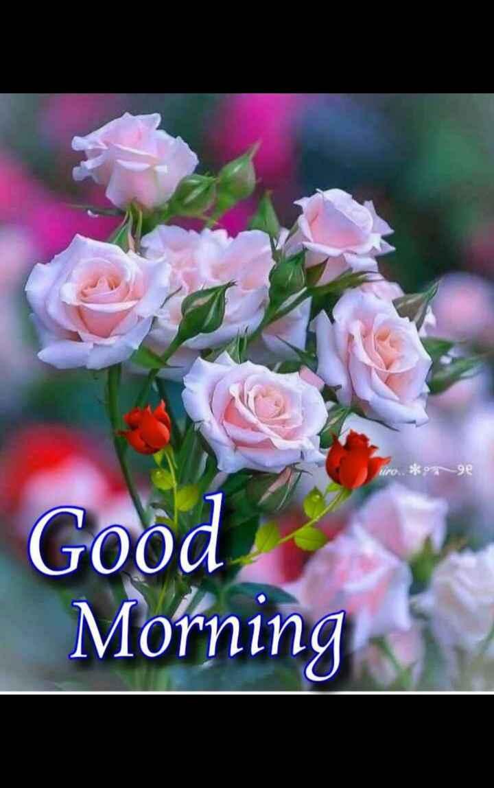 🙏శుభాకాంక్షలు - * nge Good Morning - ShareChat