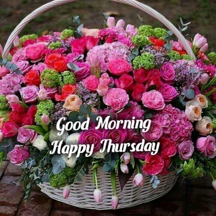 🌅శుభోదయం - Good Morning Happy Thursday - ShareChat