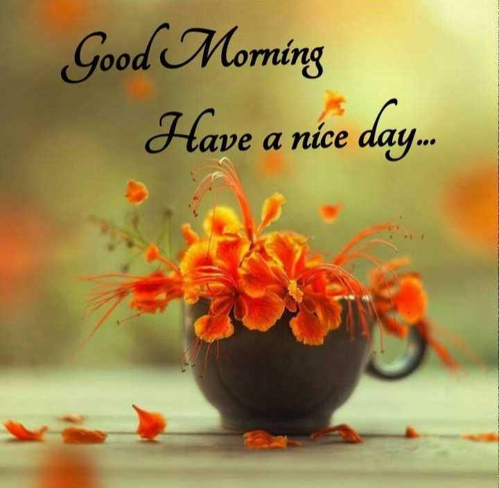 🌅శుభోదయం - Good Morning Have a nice day . - ShareChat