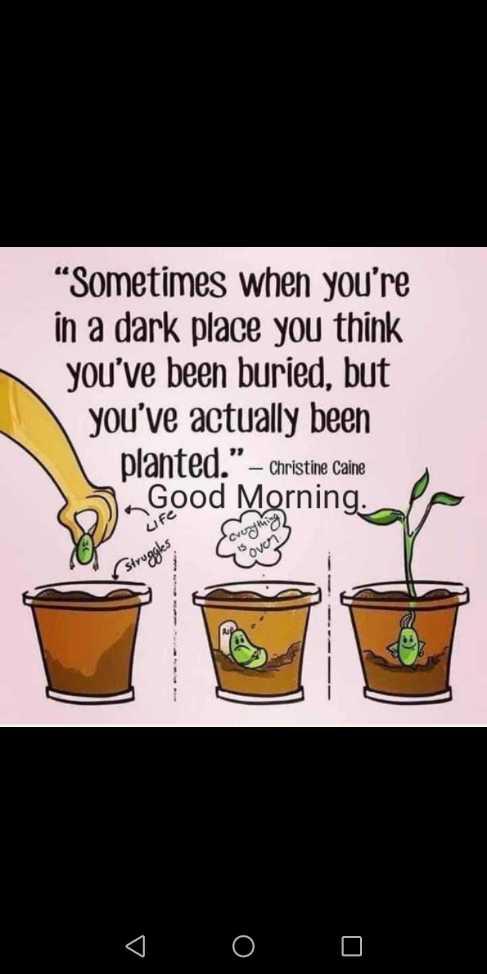 "🌅శుభోదయం - "" Sometimes when you ' re in a dark place you think you ' ve been buried , but you ' ve actually been planted . "" – Christine caine Good Morning . Life struggles Do 0 0 - ShareChat"