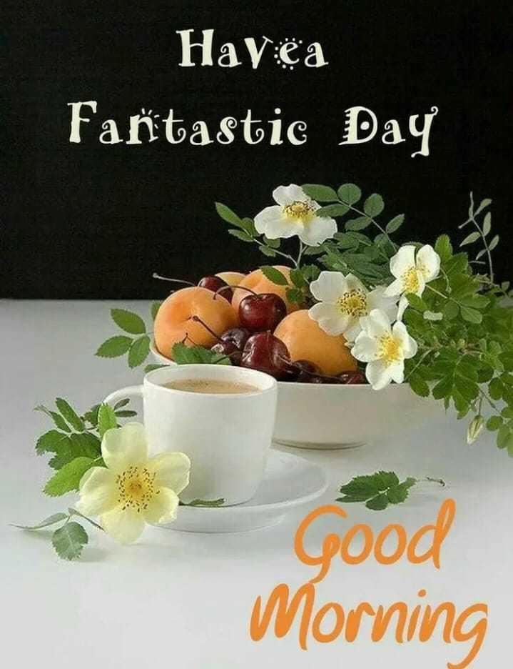 🌅శుభోదయం - Hay : ëa Fantastic Day Good Morning - ShareChat