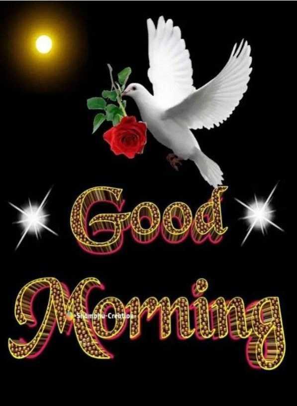 🌅శుభోదయం - * Good ) Morning Shambhu - Creations . - ShareChat