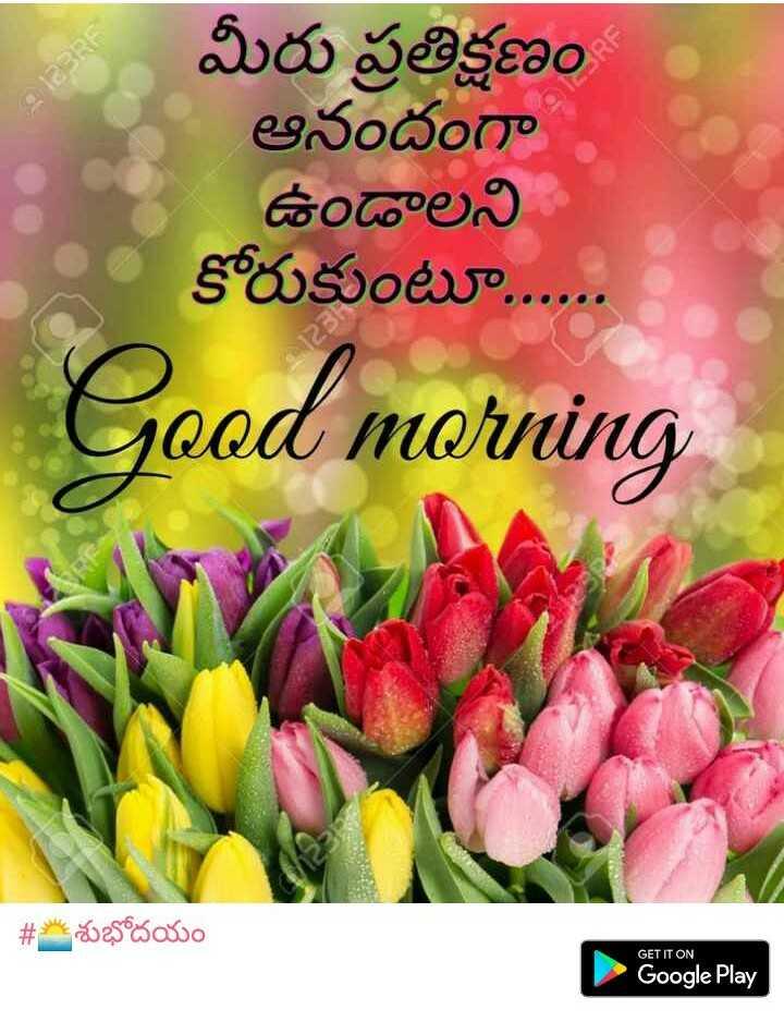 🌅శుభోదయం - 123RF మీరు ప్రతిక్షణం ఆనందంగా ఉండాలని కోరుకుంటూ . . . . . . Good morning # శుభోదయం GET IT ON Google Play - ShareChat