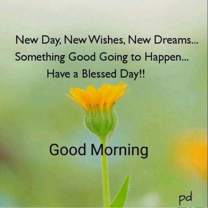 🌅శుభోదయం - New Day , New Wishes , New Dreams . . . Something Good Going to Happen . . . Have a Blessed Day ! ! Good Morning pd - ShareChat