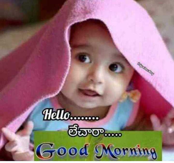 🌅శుభోదయం - Donationary Hello . . . . లేచారా . . . . . Good Morning - ShareChat