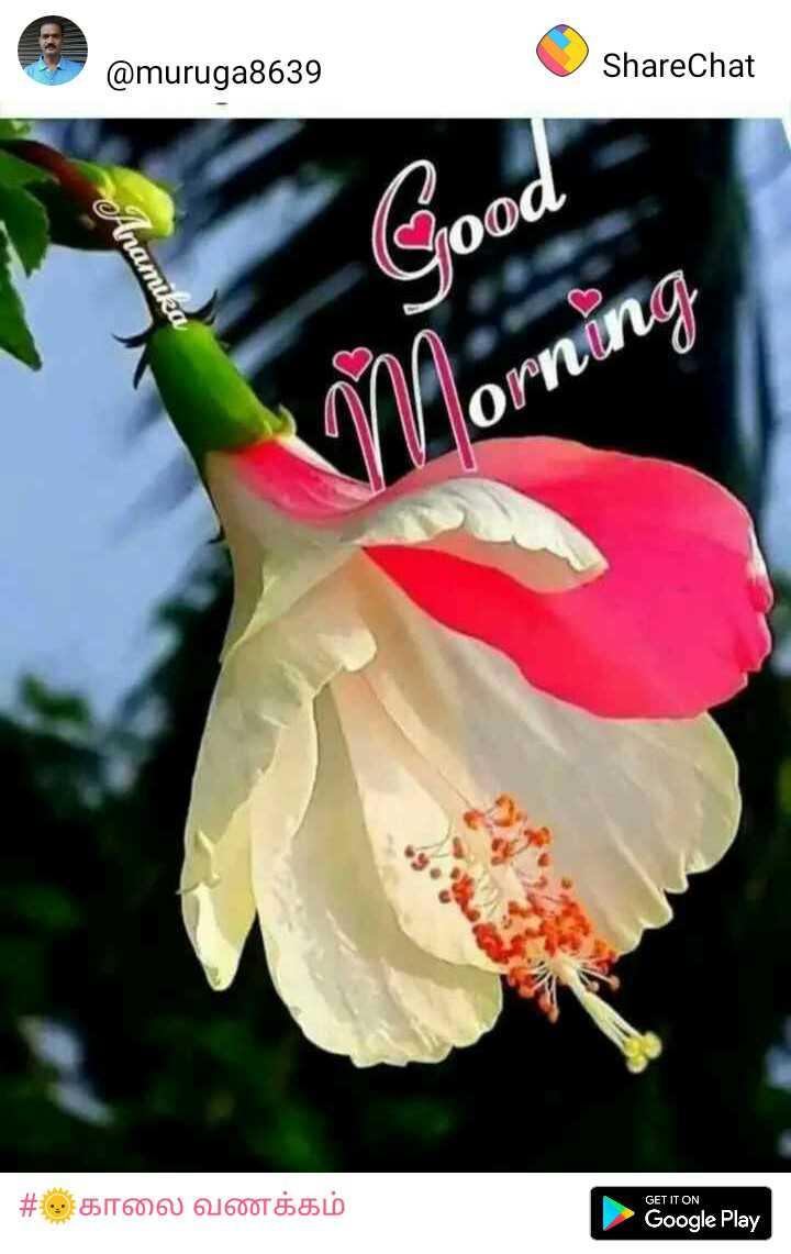 🌅శుభోదయం - @ muruga8639 ShareChat food Anamika Morning GET IT ON # 5 காலை வணக்கம் Google Play - ShareChat