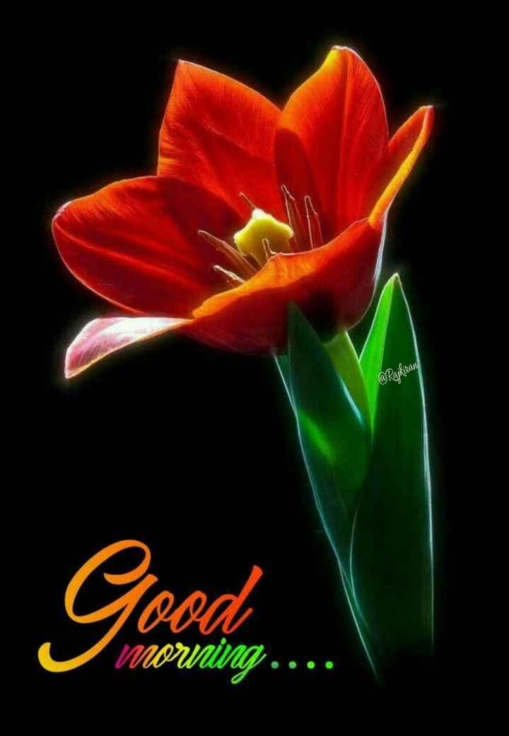 🌅శుభోదయం - @ Rajkiran Good Morning . . . . - ShareChat