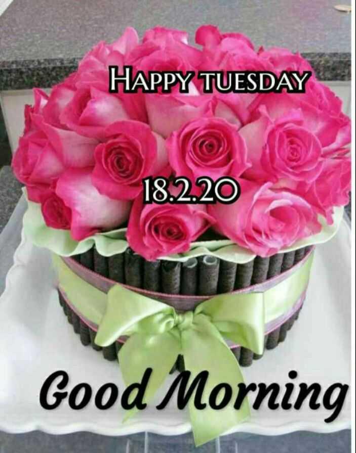 🌅శుభోదయం - HAPPY TUESDAY 18 . 2 . 20 Good Morning - ShareChat