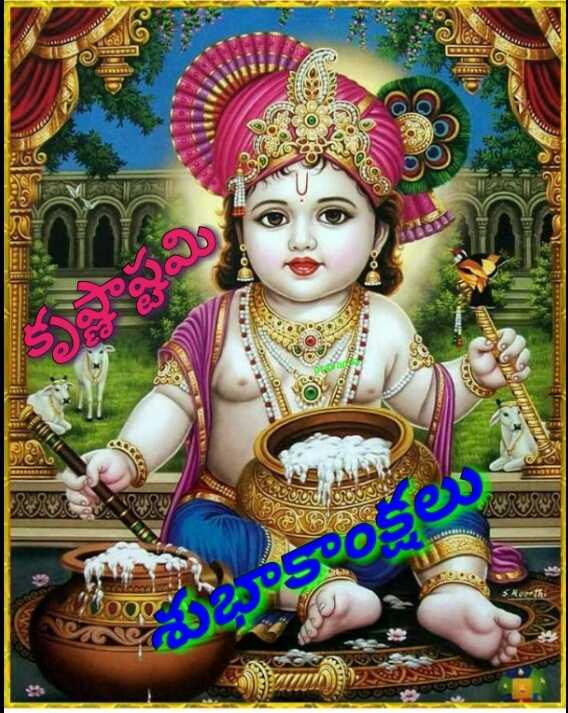 శ్రీ కృష్ణజన్మాష్టమి శుభాకాంక్షలు - 60 - ShareChat