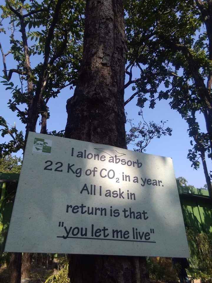 హార్ట్ టచింగ్ - Can T alone absorb 22 kg of CO in a year . Alllask in return is that you let me live - ShareChat