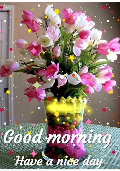 💐ಬುಧವಾರದ ಶುಭಾಶಯ - Good morning Have a nice day - ShareChat