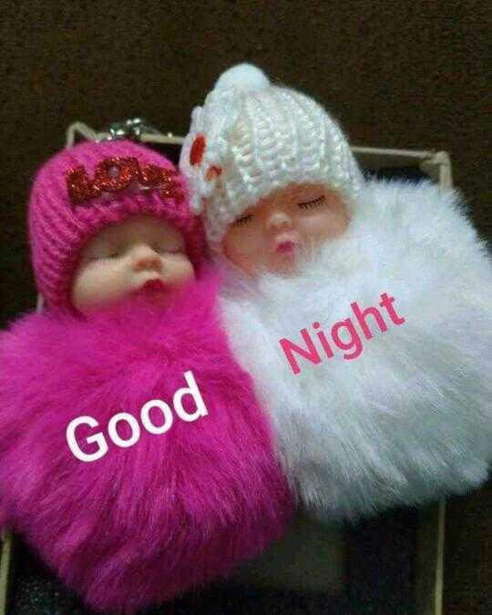 🎎 ಮಿಕ್ಕಿ ಮೌಸ್ ದಿನ - Night Good - ShareChat