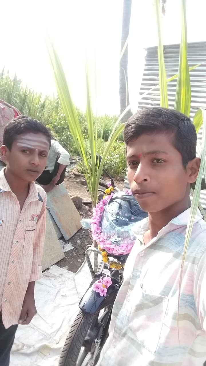 🐘  ಮೈಸೂರು ದಸರಾ - ShareChat