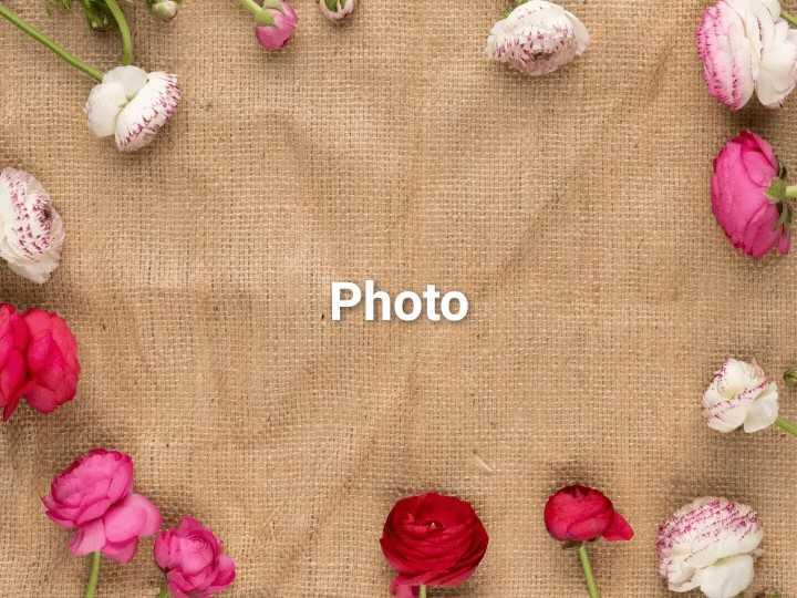 💓ಲವ್ ಟಿಪ್ಸ್ - Photo - ShareChat