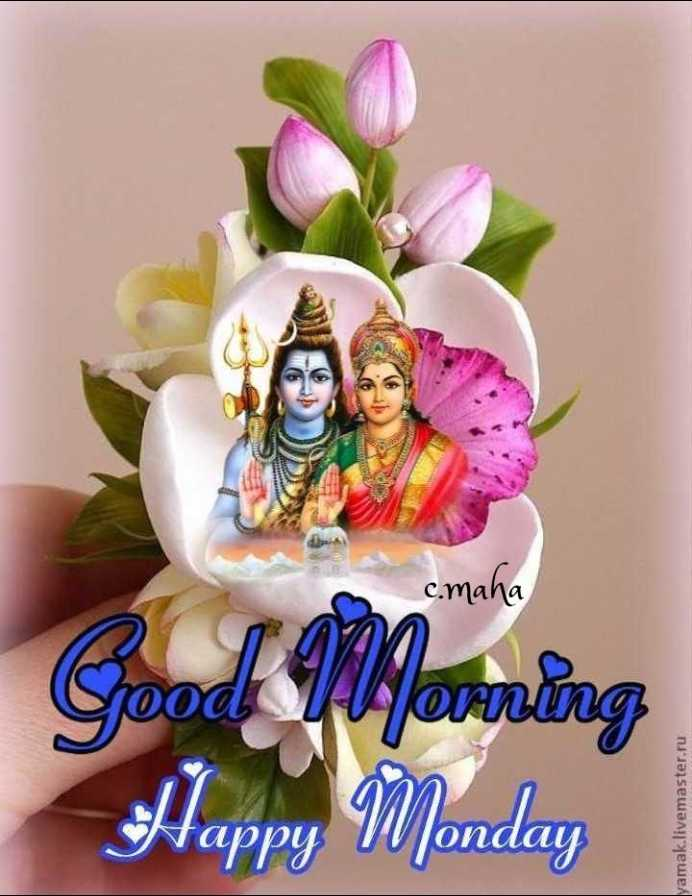 🎁ವಾರ್ಷಿಕೋತ್ಸವ - c . maha Good Yvorning Happy Monday yamak . livemaster . ru - ShareChat