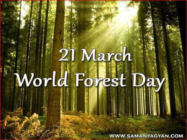 ವಿಶ್ವ ಅರಣ್ಯ ದಿನ - 21 March World Forest Day WWW . SAMANYAGYAN . COM - ShareChat