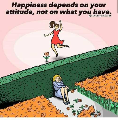 🌱ವಿಶ್ವ ಮಣ್ಣಿನ ದಿನ - Happiness depends on your attitude , not on what you have . @ successpictures G 22mm . WS 320 ney fa sou O - ShareChat