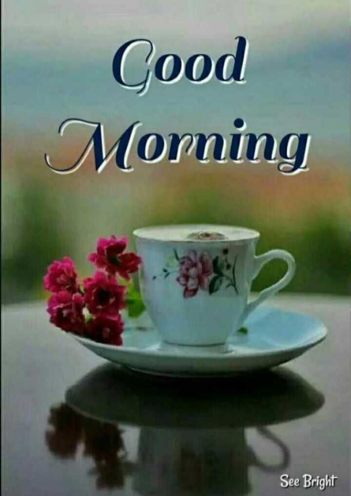 😍ವ್ಯಾಲಂಟೈನ್ಸ್ ಡೇ ವಾರ - Good Morning See Bright - ShareChat