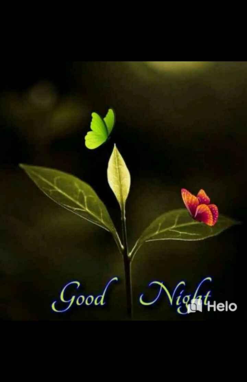 🌃ಶುಭರಾತ್ರಿ - Good Nighttielo - ShareChat