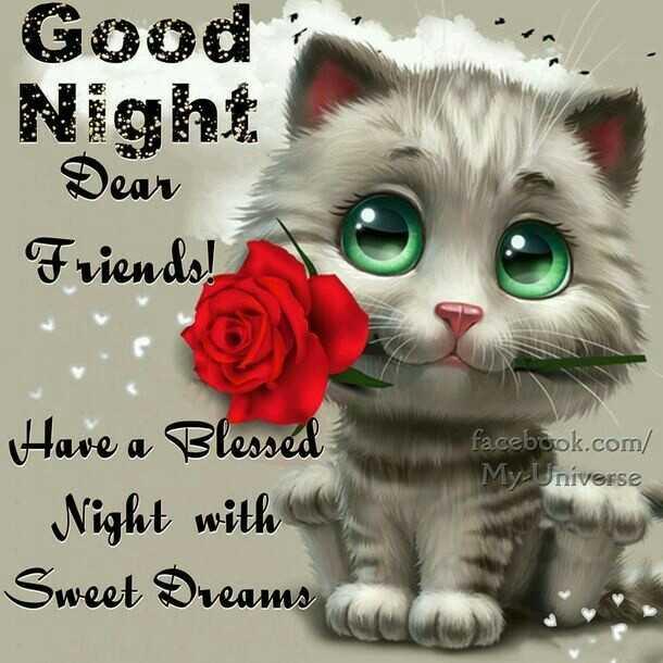 🌃ಶುಭರಾತ್ರಿ - Good Dear Friends ! facebook . com / My Universe Have a Blessed Night with Sweet Dreams - ShareChat