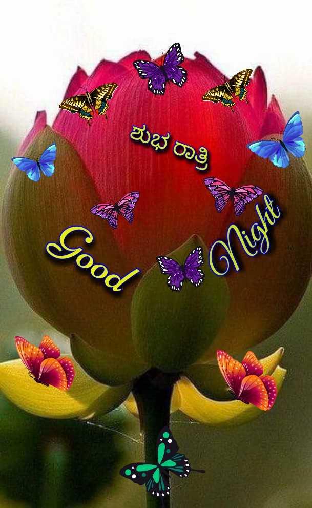 🌃ಶುಭರಾತ್ರಿ - ಶುಭ ರಾತ್ರಿ Good Night - ShareChat