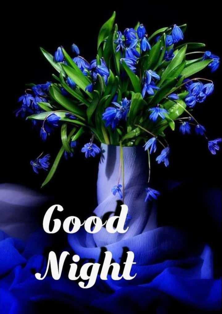 🌃ಶುಭರಾತ್ರಿ - Good Night 1 - ShareChat