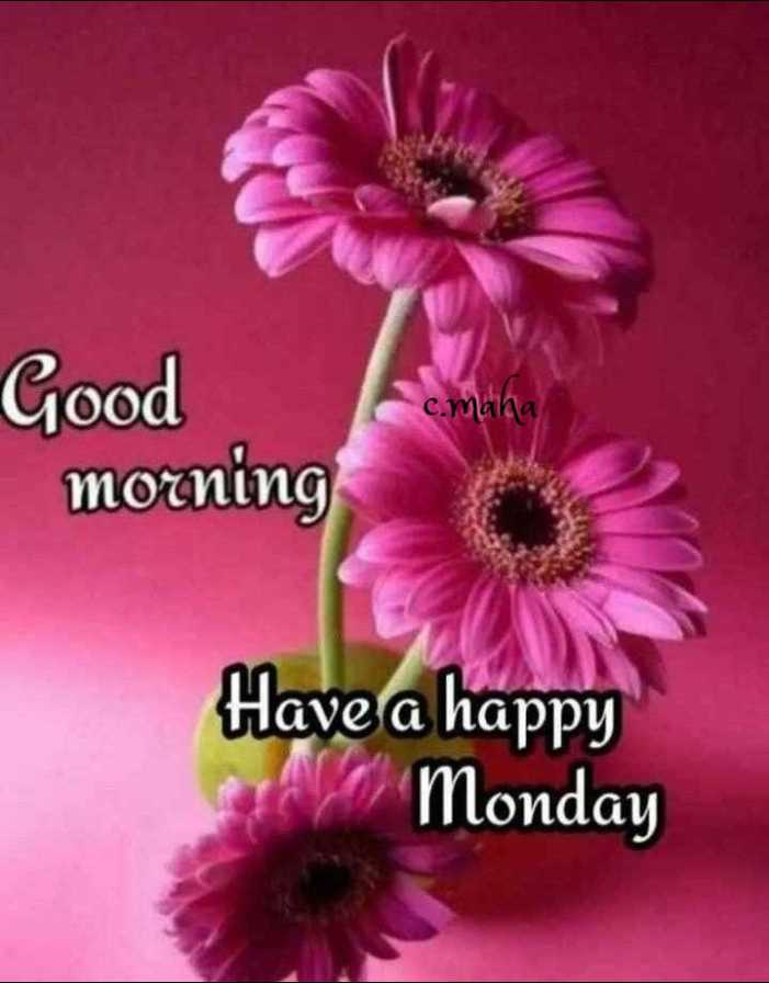 🌅ಶುಭೋದಯ - c . mana Good morning Have a happy Monday - ShareChat