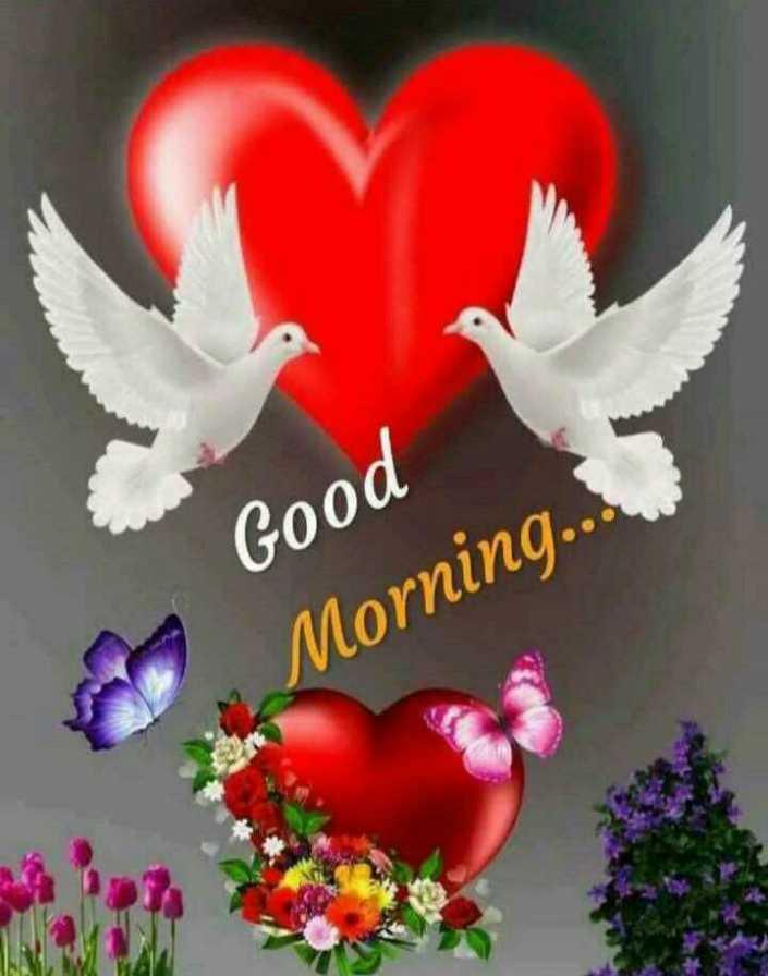 🌅ಶುಭೋದಯ - Good Morning . . - ShareChat