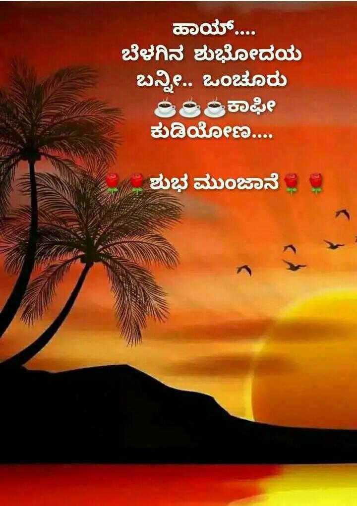 🌅ಶುಭೋದಯ - ಹಾಯ್ . . . . ಬೆಳಗಿನ ಶುಭೋದಯ ಬನ್ನಿ . . ಒಂಚೂರು 6ರಿಂಕಾಫೀ ಕುಡಿಯೋಣ . . . . ಆ ಶುಭ ಮುಂಜಾನೆ - ShareChat