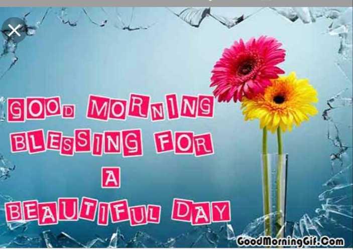 🌅ಶುಭೋದಯ - gogo MORNING BLESSING FOR S A BEAUUIFUL DAY Good Morning Gil . com - ShareChat